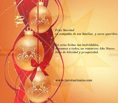 Feliz Navidad en compañía de sus familias y seres queridos. En estas fechas tan inolvidables, deseamos a todos, un venturoso Año Nuevo lleno de felicidad y prosperidad.